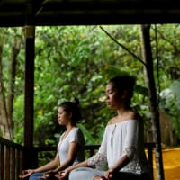 Recharge & Reset Yoga in Jungle Experiance
