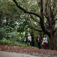 London's Best Parks Walking Tour