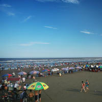 One day from field to beach in ThaiBinh