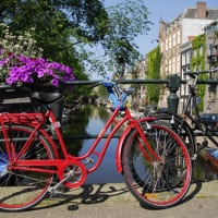 Bike Amsterdam like a true Dutchie