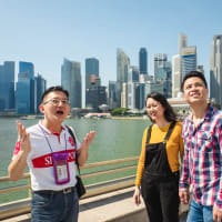 Singapore City Sightseeing by Car Private Tour