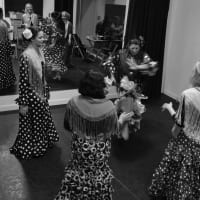 An amazing Flamenco Master Class