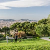 Montjuic Parks and Family Tour