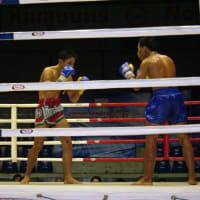 Watch Muay Thai (Thai Boxing) at the Local Stadium
