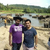Professional tour guide in Kandy