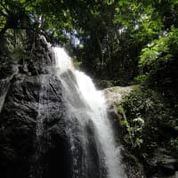 Dip in a Refreshing Waterfall