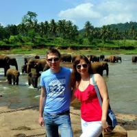 Kandy to Pinnawala tour