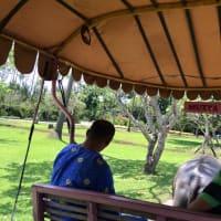 Hacienda Escudero plantation tour