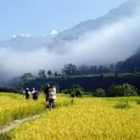 Trekking on Hills of Nawalparasi