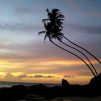 Tour around southern Sri Lanka (4 days!)