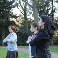 Yogic exercise in Stadswandelpark