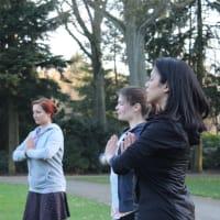 Yogic exercise in Stadswandelpark