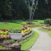 Day Trip to Kandy