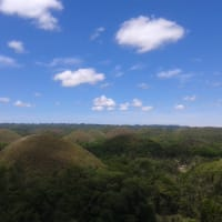 Discover Bohol in One Day!