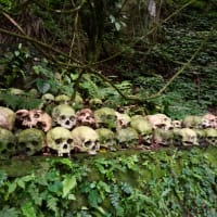 Trunyan, The Truly Magic Graveyard Trip