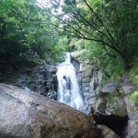 Inside Galle Tour a Tea Factory & a Waterfall