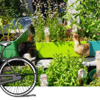Enjoy an urban farming bike tour!