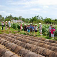 Amazing farm Trip with Healthy Cooking Class
