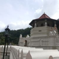 Best Cultural City- Kandy City Tour - 01 Day