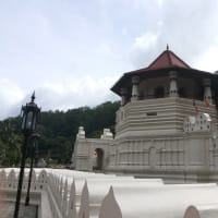 Best Cultural City- Kandy City Tour - 01 Day