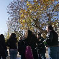 Walking Tour: Hidden Gems of Seville!