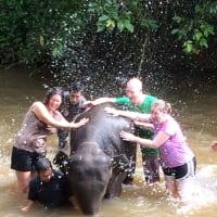 Elephants & Rainbow Waterfalls!