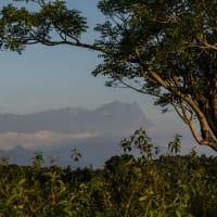 Photo trip to Kota Belud